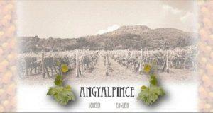 borszat_angyal_pince_2